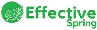 Effective Spring Logo